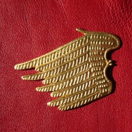 M45 Wing shaped Badge