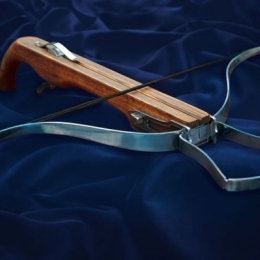Pistol grip crossbow